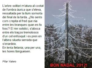 Nadal 2012