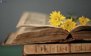 libros-antiguos,-flores-amarillas-219172